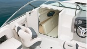 Chaparral 225 Charter